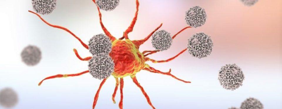 Ubijalski T limfociti in večvalovne oscilacije