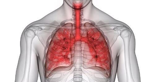 Pljučna kapaciteta za zdravje in Tesla Zaper Geo vibracije ALKIVITA bioenergijski pripomočki