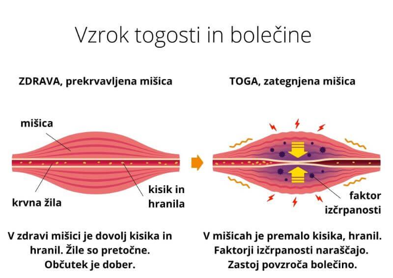 Bolečine imajo vzrok v togosti in vnetjih tkiv s premalo kisika Zaer Zaer Zaerino frekvence dr. Clark